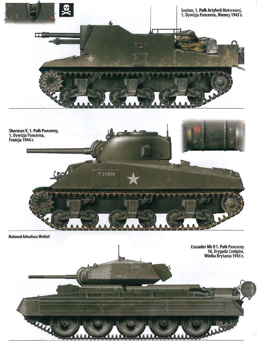 The Polish Tank 1st Division Black Devil Tanks and