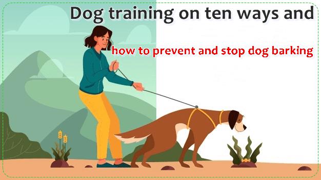 نباح الكلاب نباح الكلاب نباح الكلاب أصوات نباح الكلاب أصوات نباح الكلاب أصوات نباح الكلاب تأثير صوت نباح Dog Training Dog Barking Stop Dog Barking