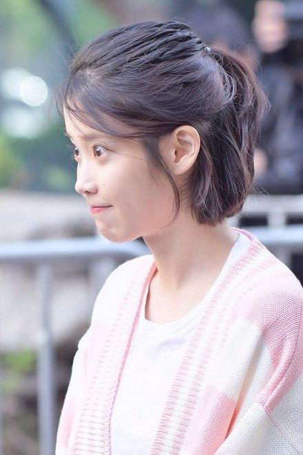 Korean Hairstyles Women Iu Short Hair Korean Hairstyles Women Korean Short Hair