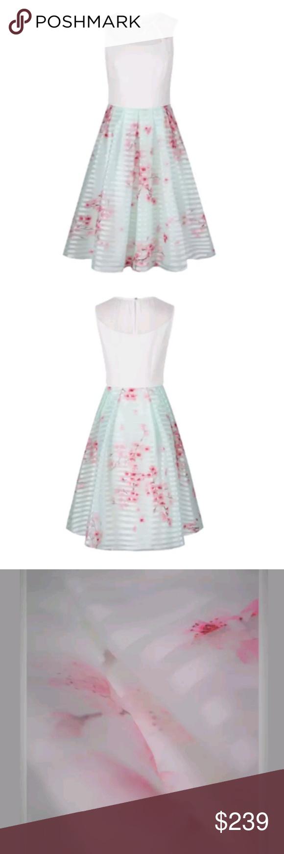 03220271f Ted Baker London Idola Soft Blossom Contrast Dress Ted Baker London Idola  Soft Blossom Contrast Dress