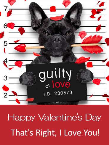 Guilty Of Love Happy Valentine S Day Card For Him Birthday Greeting Cards By Davia Valentines Day Dog Valentines Day Teddy Bear Happy Valentines Day Card