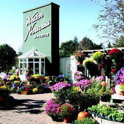 Weston Nurseries Of Hopkinton Ma United States