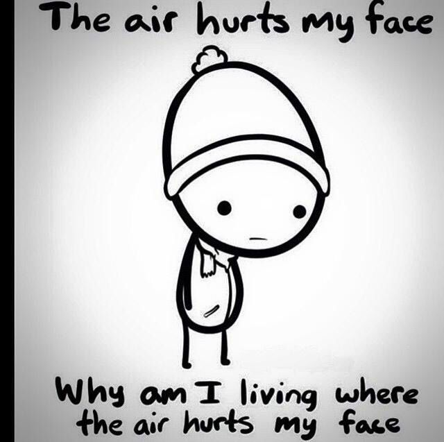 79c9625fec927444e52e5bf995a00f2f it's cold outside! funny and odd pinterest memes and humor