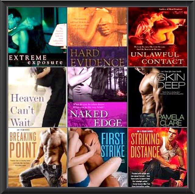 I-Team Series by Pamela Clare