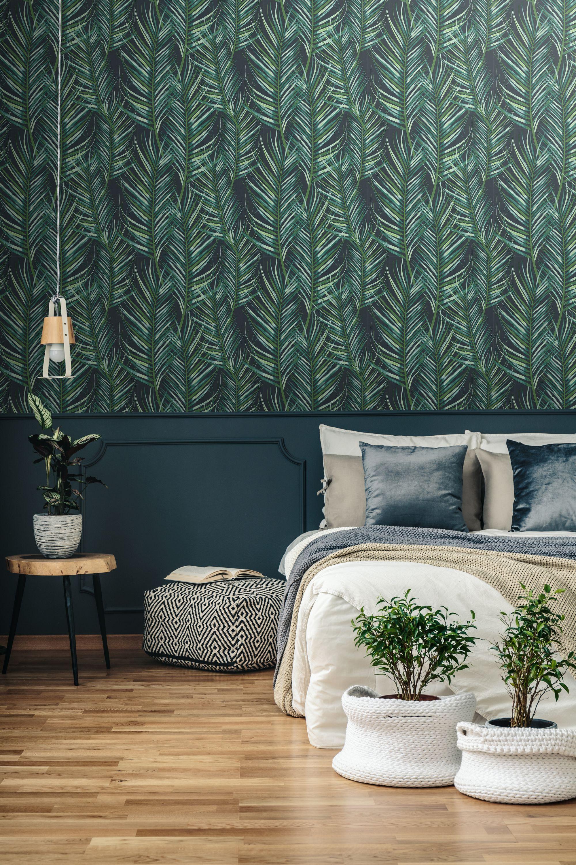 Paradise 100558 Wci Wallpapers South Africa Wallpaper Supplier And Installer Wallpaper Walls Bedroom Contemporary Wallpaper Designs Green Wallpaper