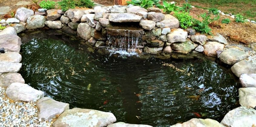 Building Your First Koi Pond Ponds backyard, Outdoor