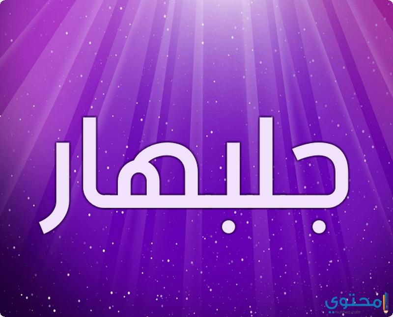 معنى اسم جلبهار وحكم تسميته فى الاسلام Glbhar معاني الاسماء Glbhar Jelbhar Nintendo Wii Logo Wii Nintendo Wii