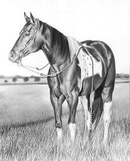 extraordinario-hiperrealismo-caballos