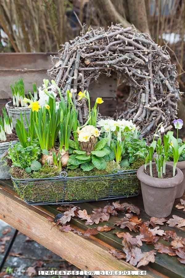 Photo of Garten Flow, #Flow #garten #springgardenpot