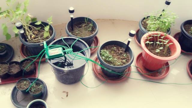 Diy Simple Irrigation System Bonsai And Plates Can Be Watered By