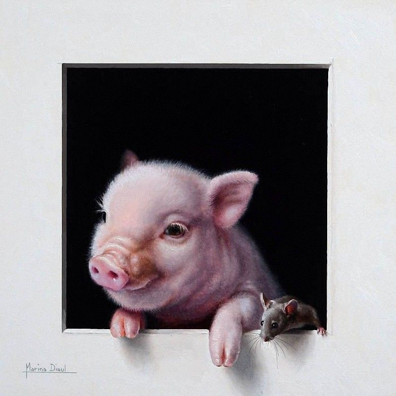 Photo from album  Marina Dieul  on is part of Pig painting, Pig art, Animal paintings, Animal art, Pet portraits, Animals - View album on Yandex Disk