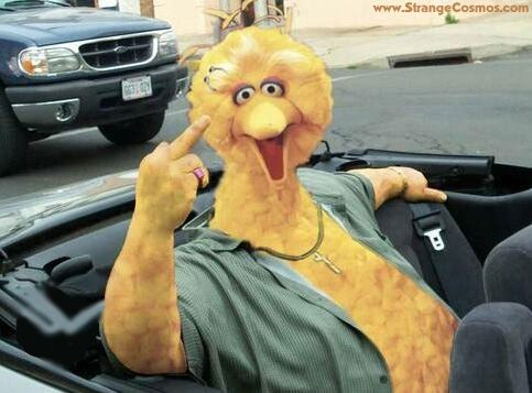 Image result for big bird giving the finger