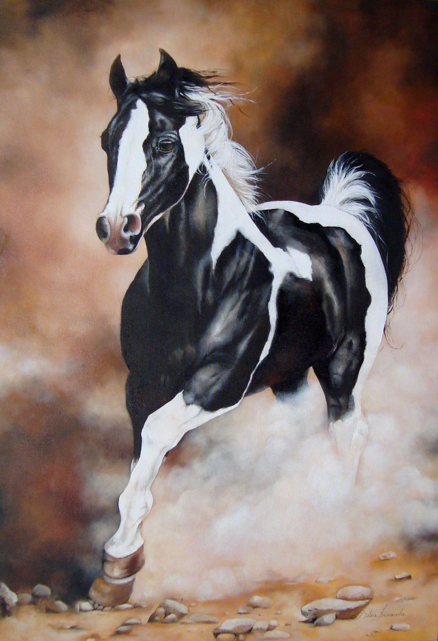 Horses Art By Licia Fernanda Santos