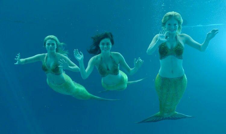 Bella cleo rikki h2o mako pinterest - Image de sirene h2o ...