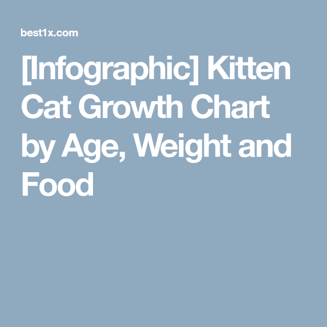 Infographic Kitten Cat Growth Chart By Age Weight And Food Cat