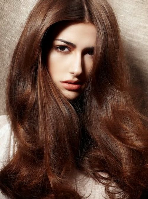 Hair Color For Olive Skin And Black Eyes Chestnut Hair Color