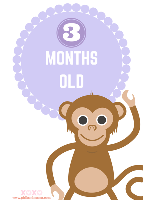 Groovy Super Cute And Free Printable Animal Themed Baby Monthly Interior Design Ideas Lukepblogthenellocom