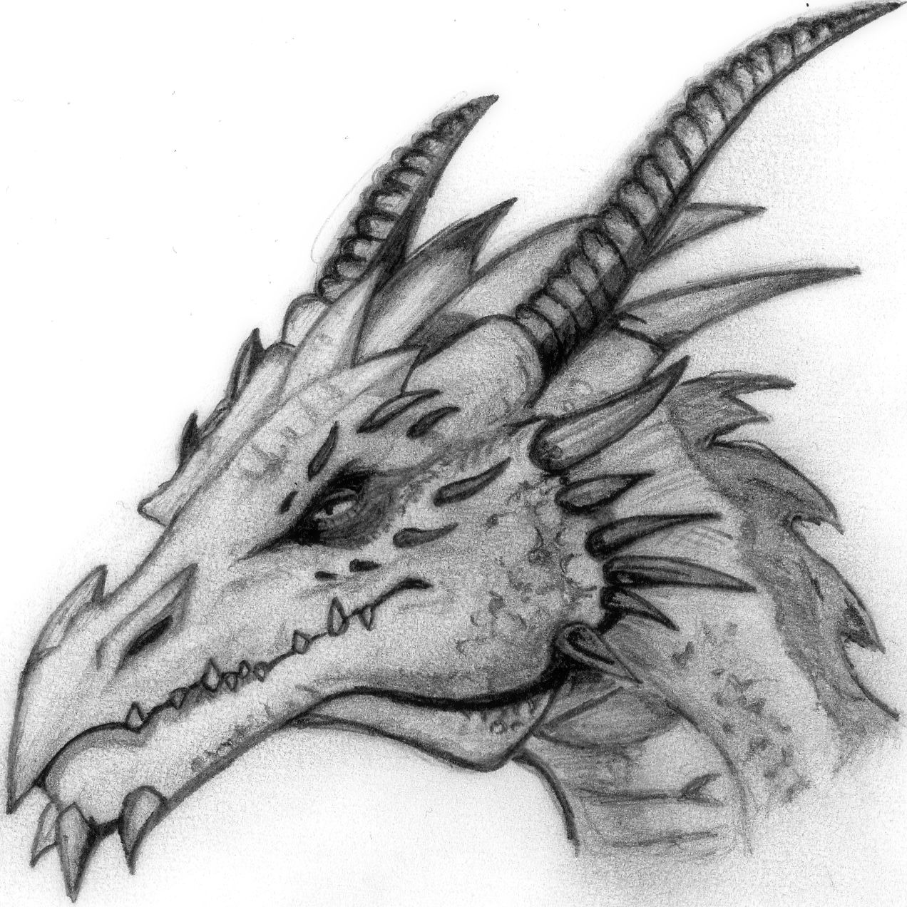 Pics for cool dragon head drawings in pencil