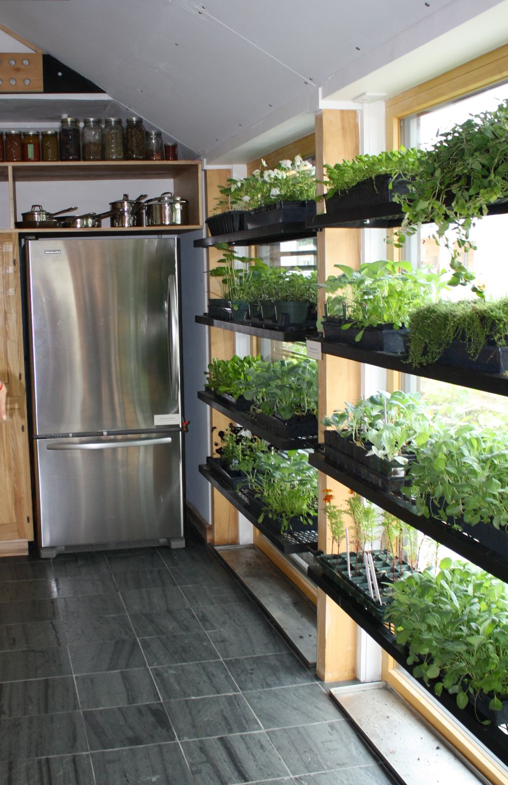 kitchen grow design - Szukaj w Google | Indoor vegetable ...