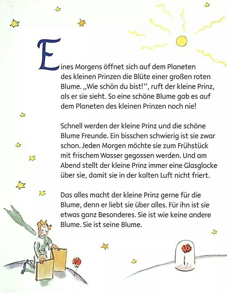 Seine Blume Der Kleine Prinz Zitate Der Kleine Prinz Und