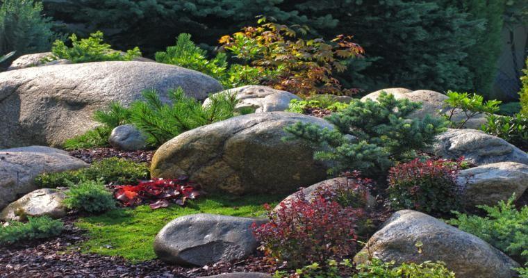 Rocalla en el jardín - cincuenta ideas decorativas geniales