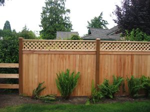 Pin By Daniel Poole On For The Home Privacy Fence Designs Diy Privacy Fence Fence With Lattice Top