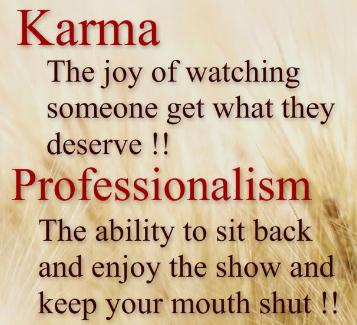 11 professionalism quotes