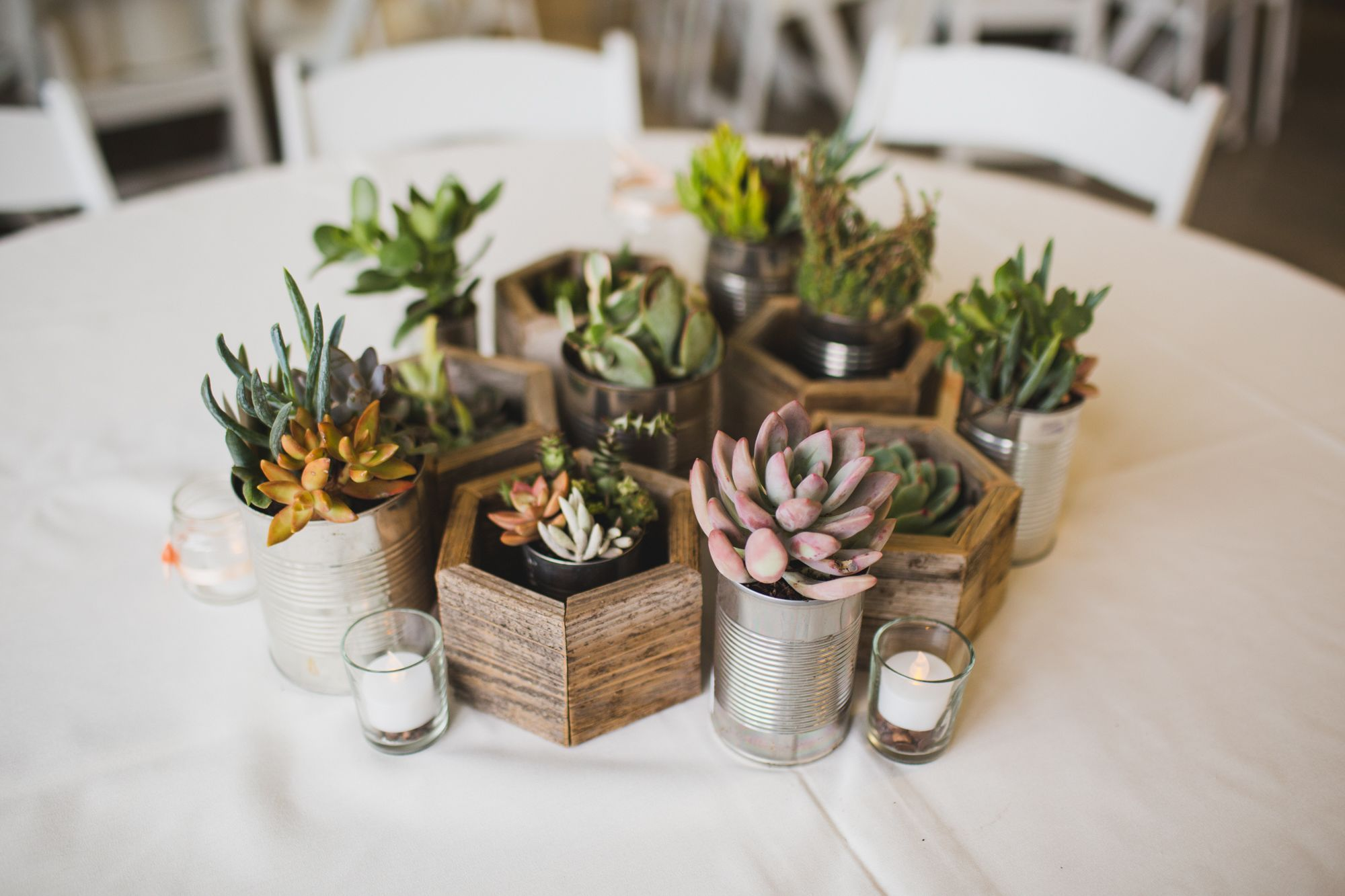 Diy succulent centerpieces in recycled planters centerpiece in