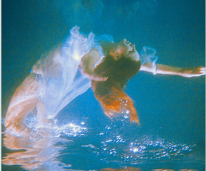 Neil Krug Fish pet, Pale fire, Animals