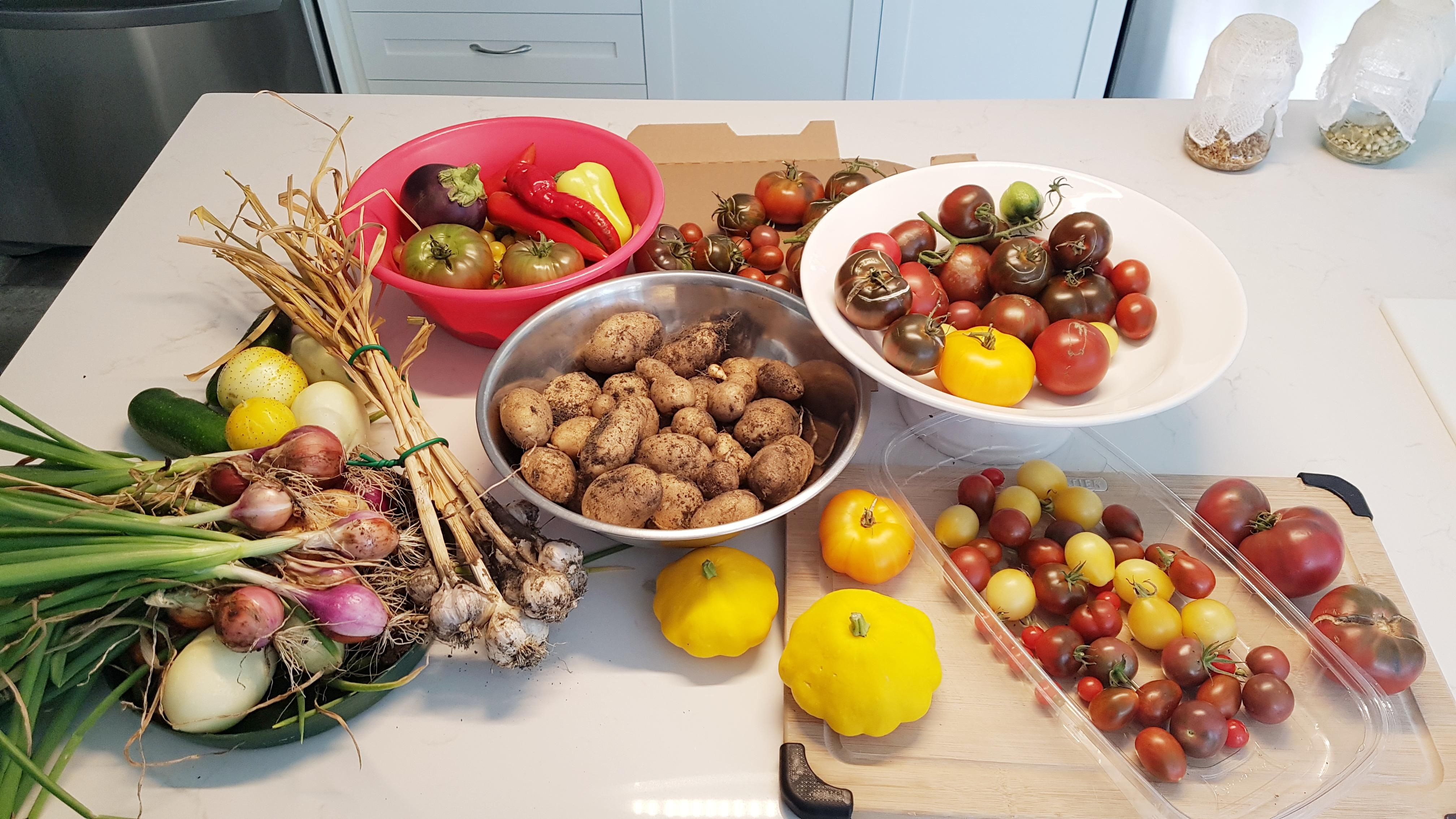 Anniversary Harvest 2019, my favourite tradition.