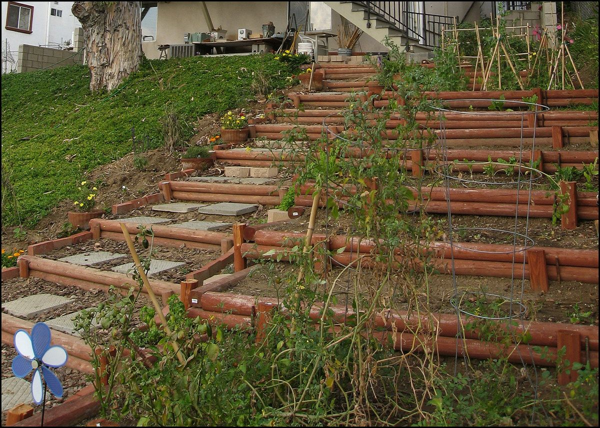 Photo Journal - Hillside Landscaping Vol 1 - Terracing with Wood ...