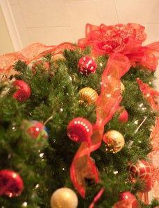 10 Tips to Start a Christmas Tree Farm to Make Money | Christmas ...