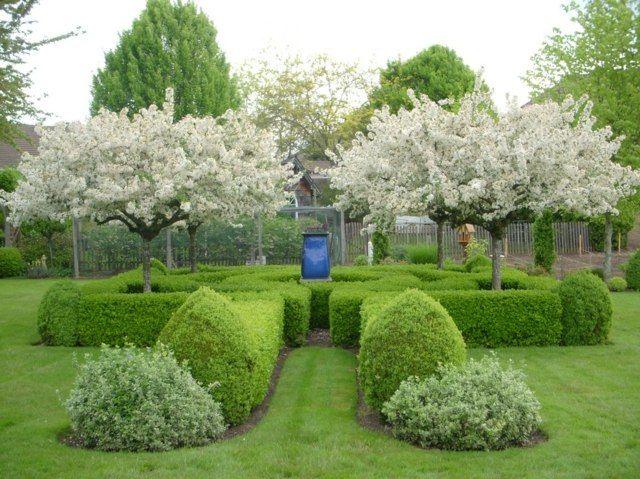 traditioneller-englischer-garten-bäume-zierkirsche-ideen,