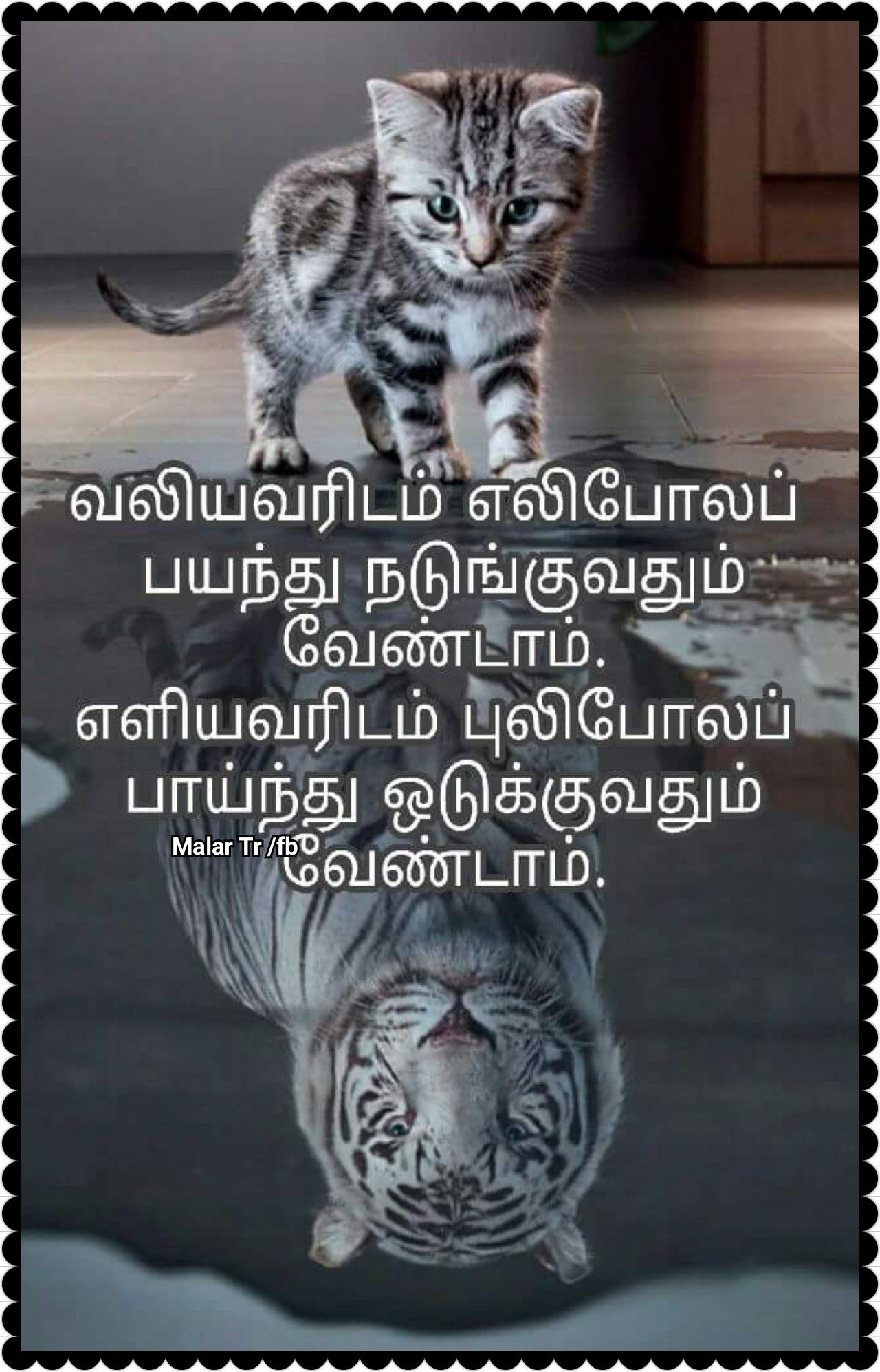 Pin by Malar Tr on Quotes in Tamil Tamil motivational