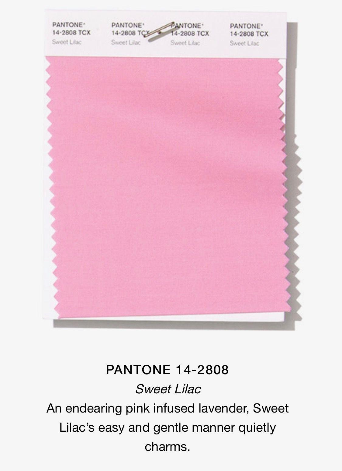 Pantone sweet lilac luxurydotcom pretty color palettes