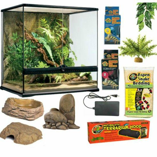 The Basic Corn Milk King Snake Glass Terrarium Kit Is Big Apple S