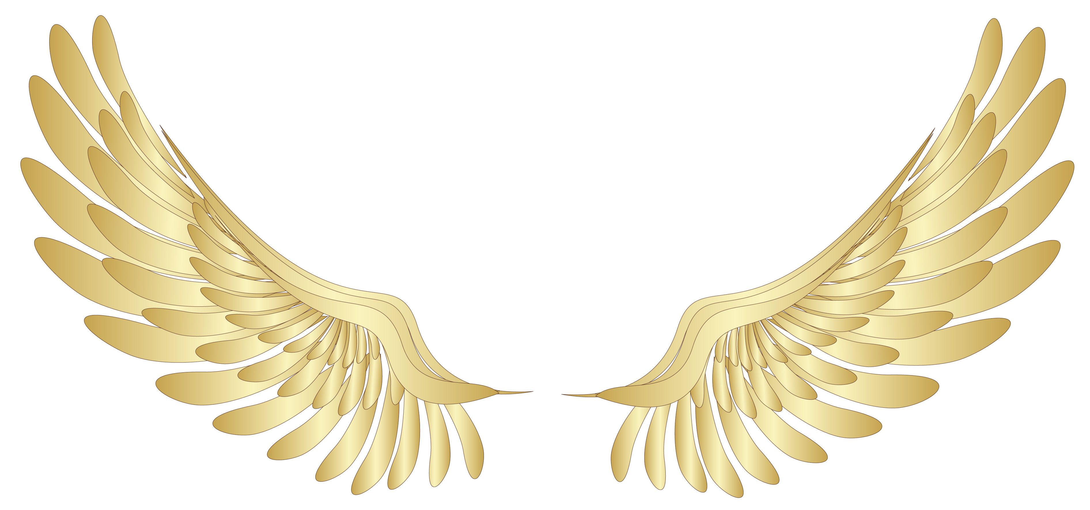 Wings transparent. X pin clipart