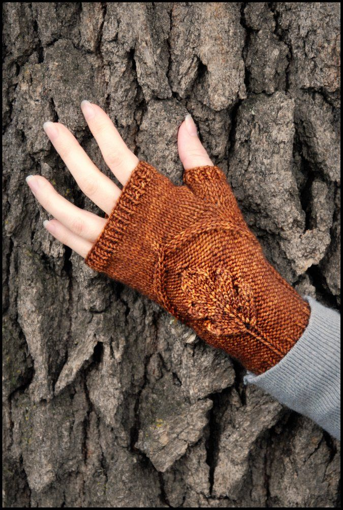 Oak Grove mitts. I'm thinking with knit pick's new Galileo line!