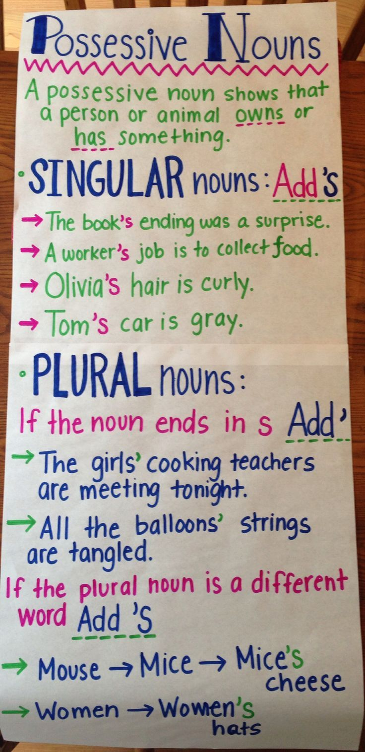 possessive nouns anchor chart singular and plural nouns