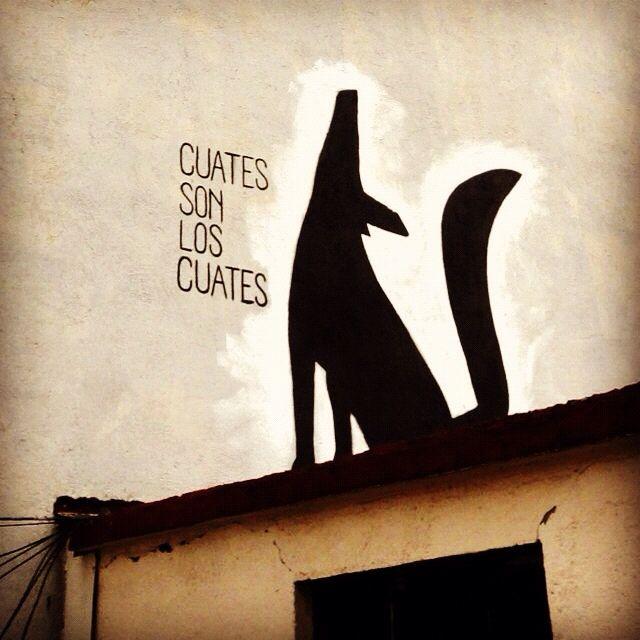 CUATES SON LOS CUATES @gaucholadri #streetart #mexico