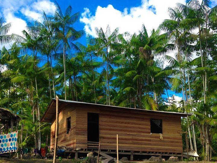 Descobrindo o Marajó: casa de ribeirinhos próxima a nossa fábrica em Afuá. #palma #palmito #palmitopalma #amazonia #amazon #amazonfood #sustentabilidade by palmitopalma http://ift.tt/25sYU3Y