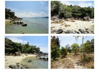 Land For Rent In Koh Lipe  (Tarutao National Park) | SW