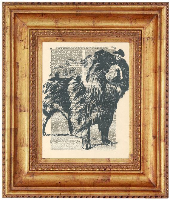 Chow Dog Sketch Black Dictionary Art Print by HangWithUsToday, $6.00