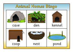 Animal homes bingo (SB7980) SparkleBox Animal house