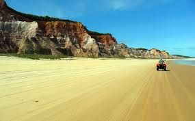 Resultado de imagem para praia do gunga em alagoas