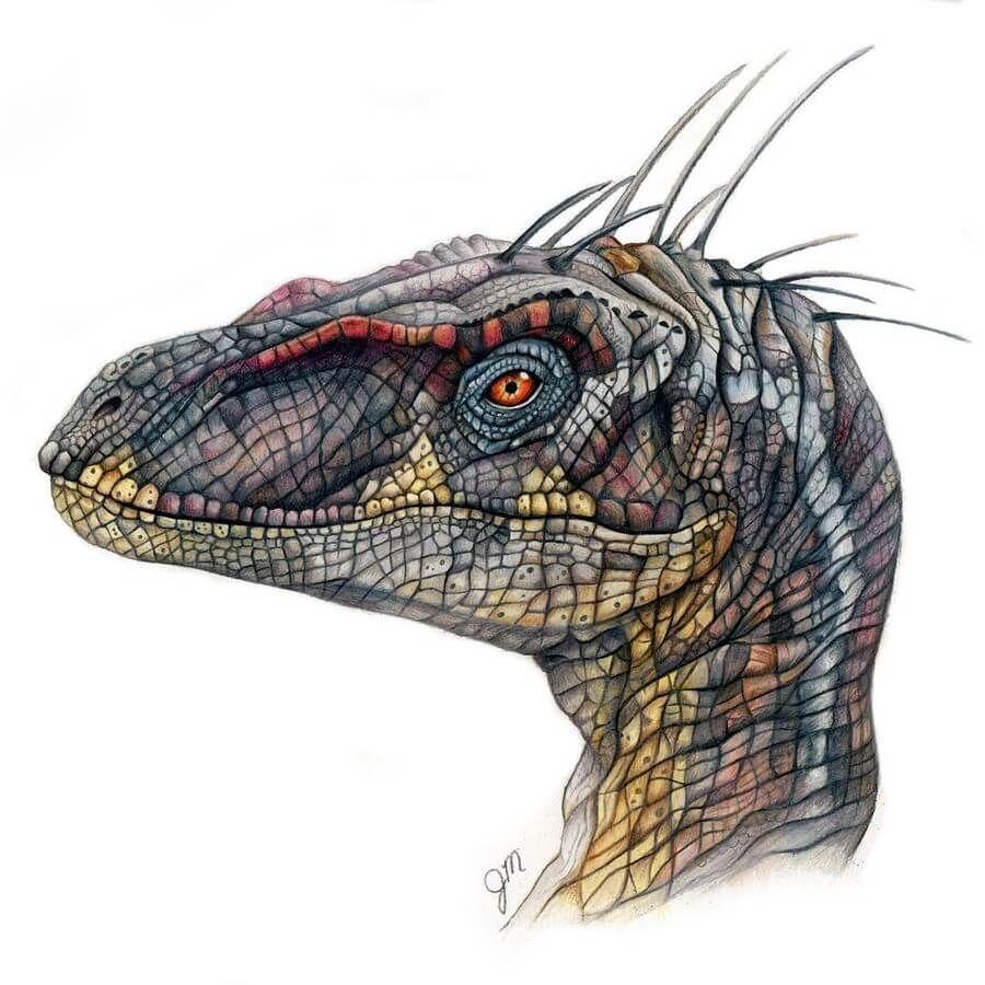 Dinosaur Drawing.