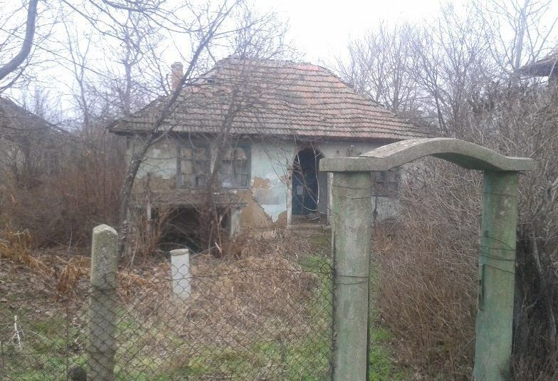 property, house in NOVO SELO, VIDIN, Bulgaria - House 80m2, 2 bedrooms, walk to river Danube
