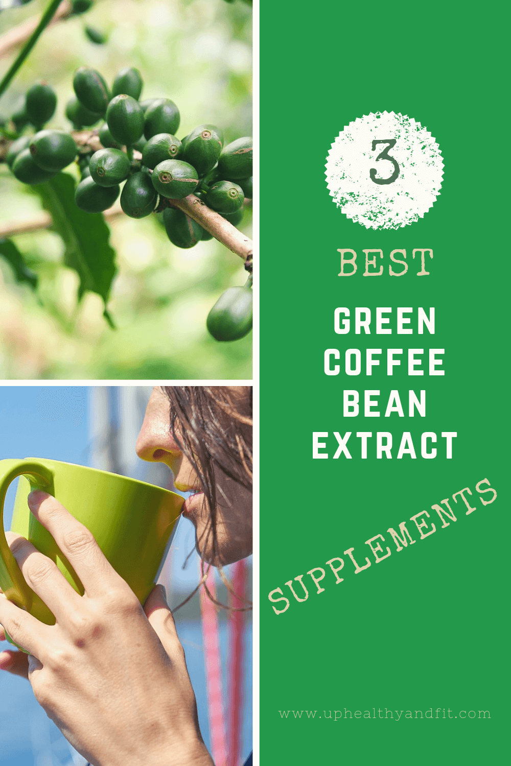 Best green coffee bean extract supplements detailed