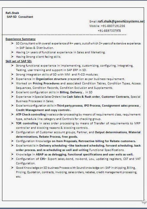 curriculum vitae template doc Sample Template Example ofExcellent - sample resume doc