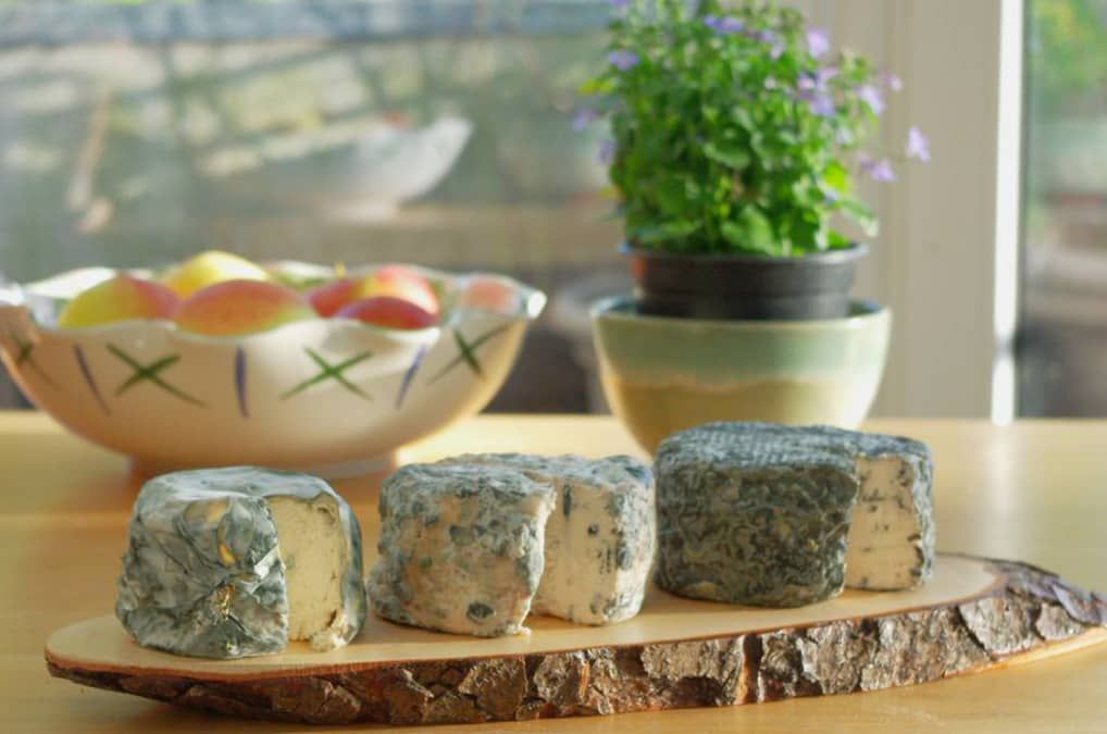 How To Make Cashew Blue Cheese On Vimeo Cashewbert Vegan Cheese Blue Cheese Recipes Blue Cheese